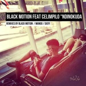 Black Motion - Ndinokuda (I Love You) (Manoo's Aitf Remix) Ft. Celimpilo
